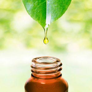 Essential Oil Singles